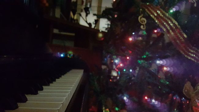 Pht Photo Inloveby Nofilter Nofocus  Focus Nonothing Night Lights Tree Christmastree Christmas Gorgeous Colours Pure Special Christmaslover Music Musician Piano Pno Pianolover Musiclover Lovephotos