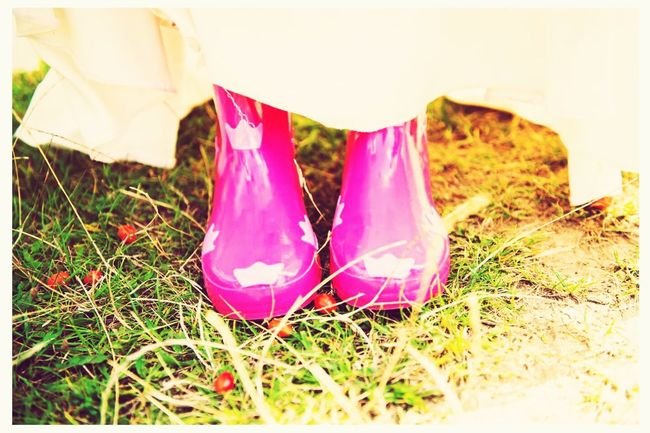 Grass Pink Color Vibrant Color Freshness Grassy Autumn Colors Berries Country Rubbershoes