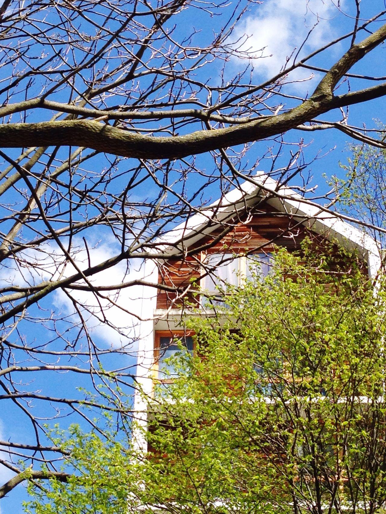 Paris Paris13 House Sun Sky Trees Architecture Showcase April