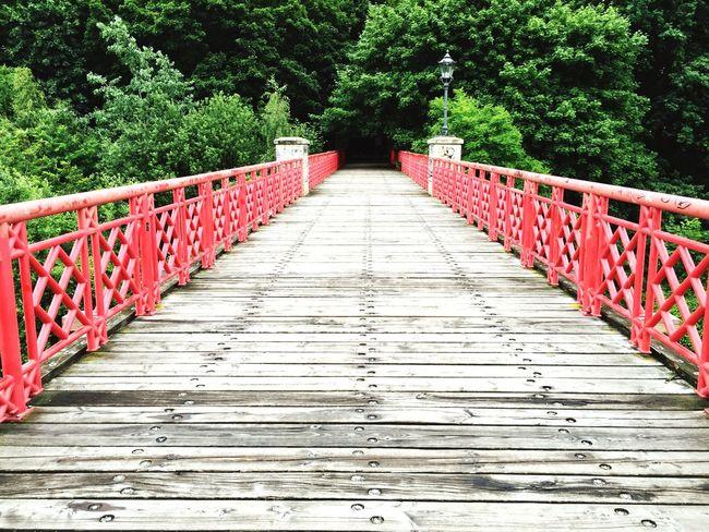 Bridge Perspective Into The Woods