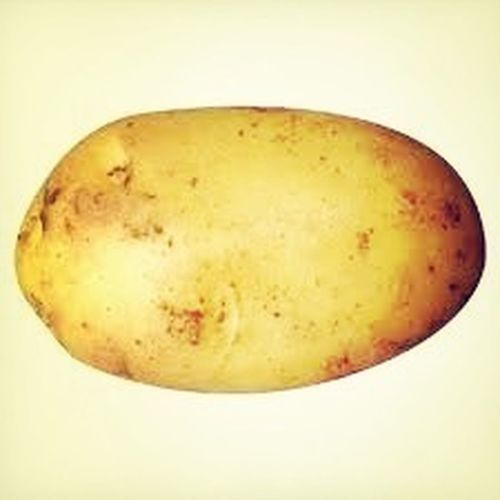 It's me! You know just chillen, being a potato as usual.