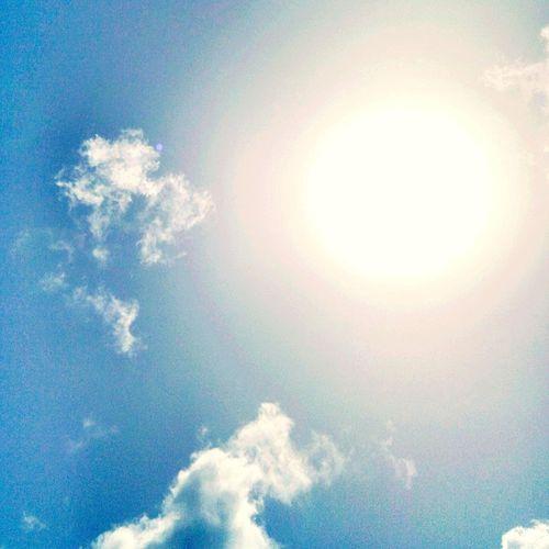 Sunny☀day Summertime Sun Glare