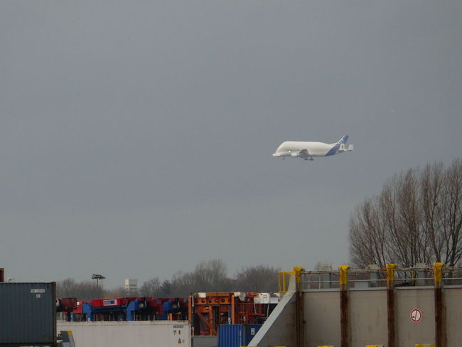 Aerospace Industry Air Force Air Vehicle Airbus Airbus A 300-600 Airplane Beluga Cold Temperature Day Drone  Flying Großraum-Verkehrsflugzeug Mode Of Transport Nature No People Outdoors Passenger Boarding Bridge Sky Snow Tree Winter
