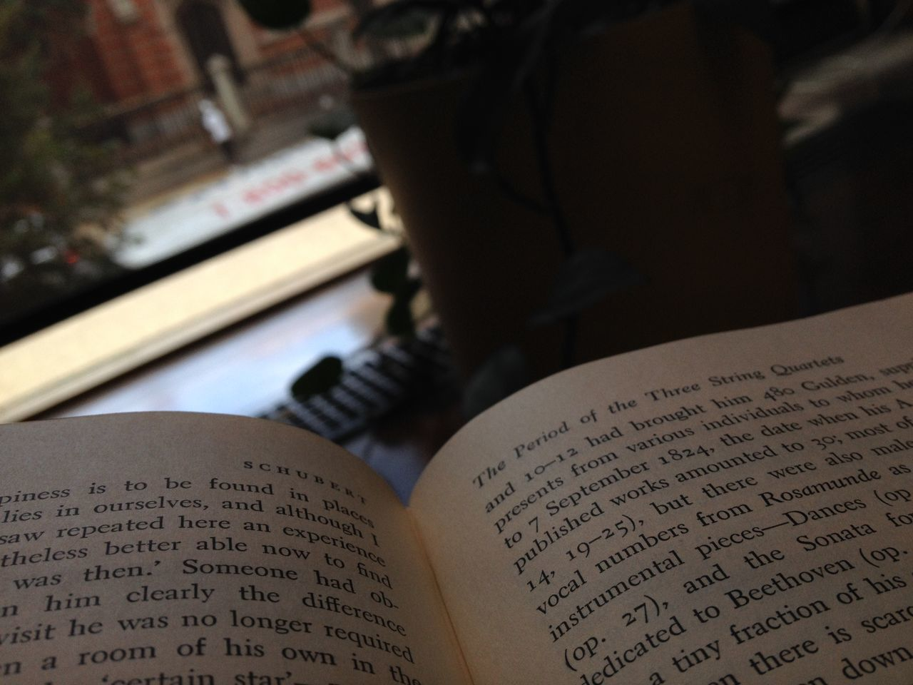 text, western script, book, spirituality, communication, indoors, page, close-up, education, religion, focus on foreground, hope, no people, day