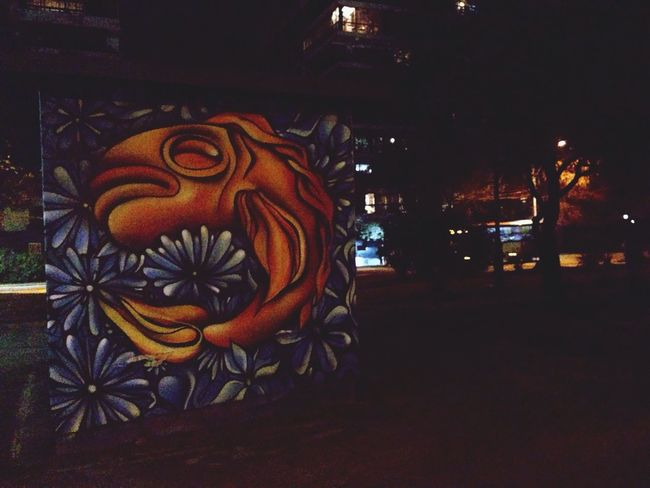 Walking Around Nightphotography Chile Graffiti