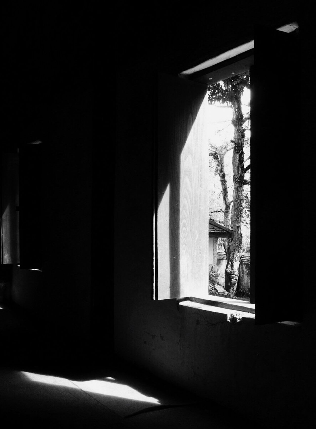 Light And Shadow Light Window Thailand Black And White Blackandwhite Temple Chiang Mai Mae Jam Tree Indoors  Trees Outside