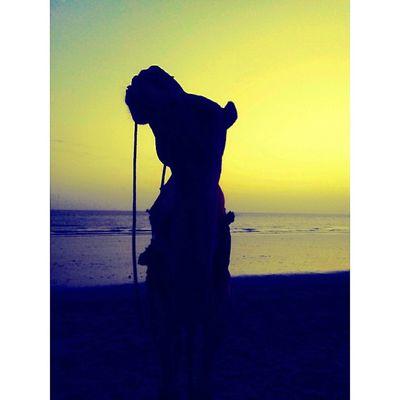 Creative Light And Shadow Camel Beach Beachphotography