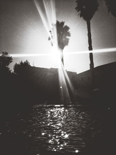 Capa Filter 25 Days Of Summer EyeEm Best Shots - Black + White IPhoneography