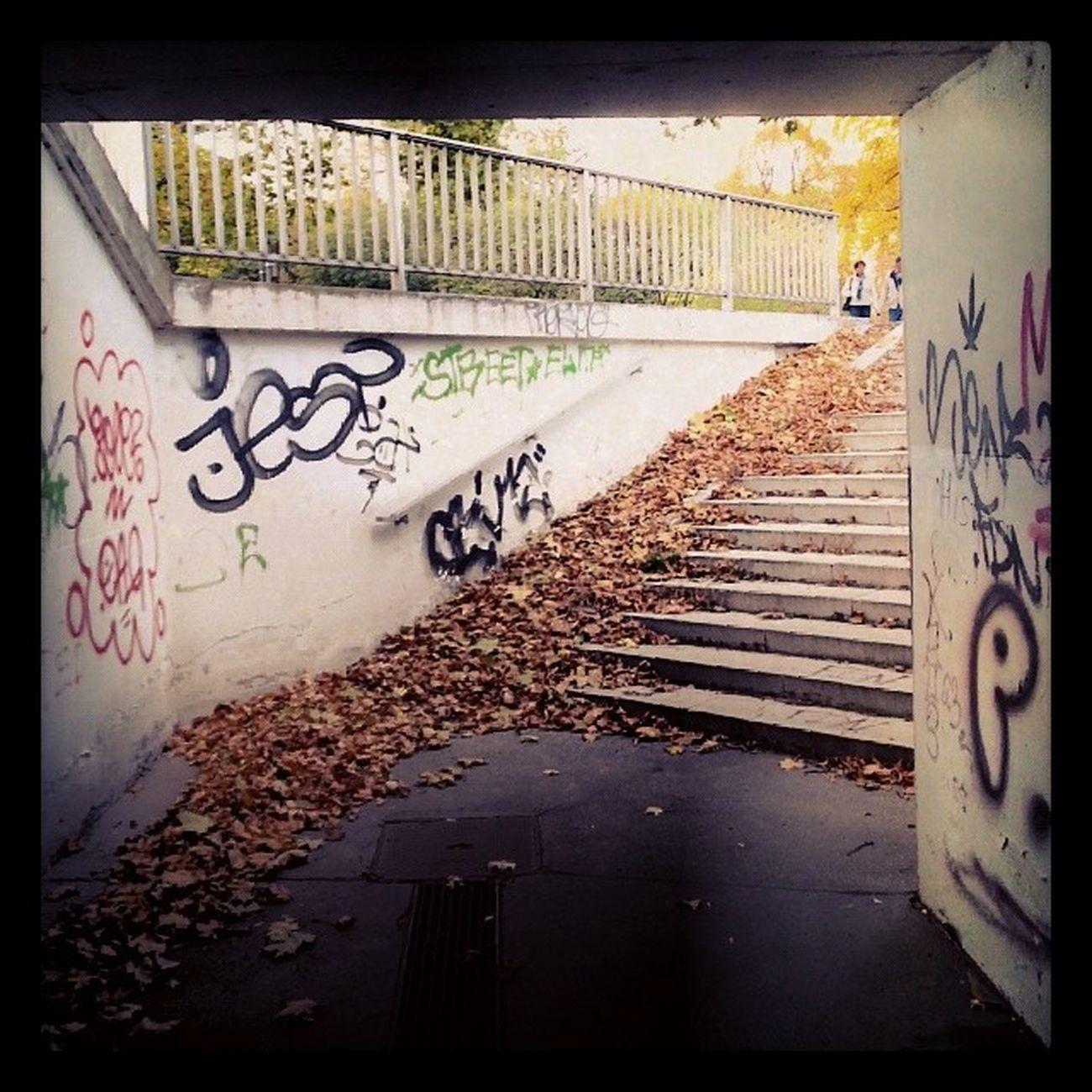 Stairs Graffiti Autumn Leafes subway underpass stadtpark wienerneustadt austria