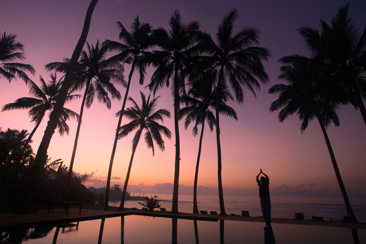 Adult Beach Beauty In Nature Nature Outdoors Palm Tree People Photographer Romantic Sky Sea Silhouette Sky Sunset Tourism Tourist Travel Destinations Tree Vacations Water