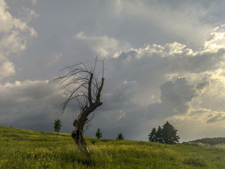 Bol Cloud - Sky Czerwiensk Dramatic Sky Lights Poland Sky Storm Weather