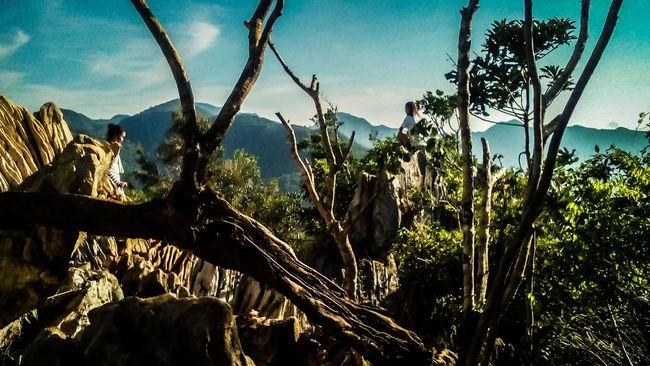 Be Free Eyeem Philippines Hiking Adventure Trees Sky Blue