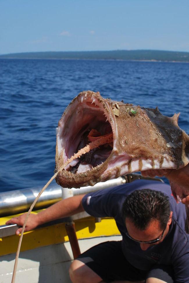 BIG Boat Trip Croatia Fish Fishboat Fishing Lifestyles Water