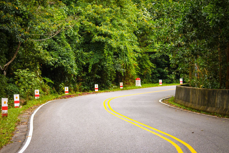 Tree Road Day Outdoors The Way Forward Green Color No People Nature Yellow Line Way Forward Transportation Bend On The Road