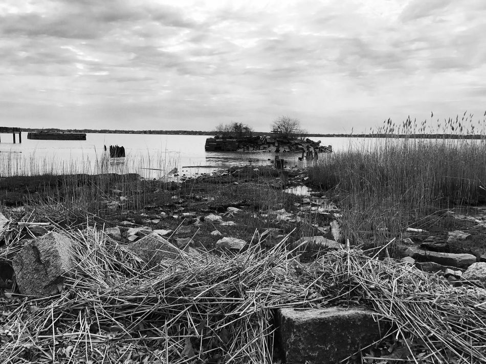 Sky Cloud - Sky Grass Water Nature Outdoors No People Plant Day Tranquility Lake Growth Scenics Beauty In Nature Architecture Blackandwhite