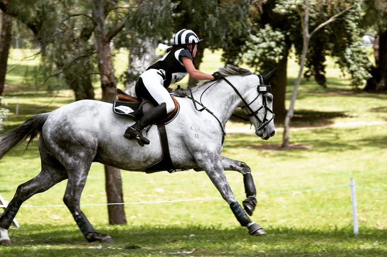 Horse Competition Animal Themes Grass Side View One Animal Jockey Riding Full Length Day Outdoors Horse Racing Leisure Activity Nature Sport Tree Sports Race Wideangle Lens Wide Angle Equestrianphotography Equestrianlife Equinephotography Equine Equestrian Equine Photography