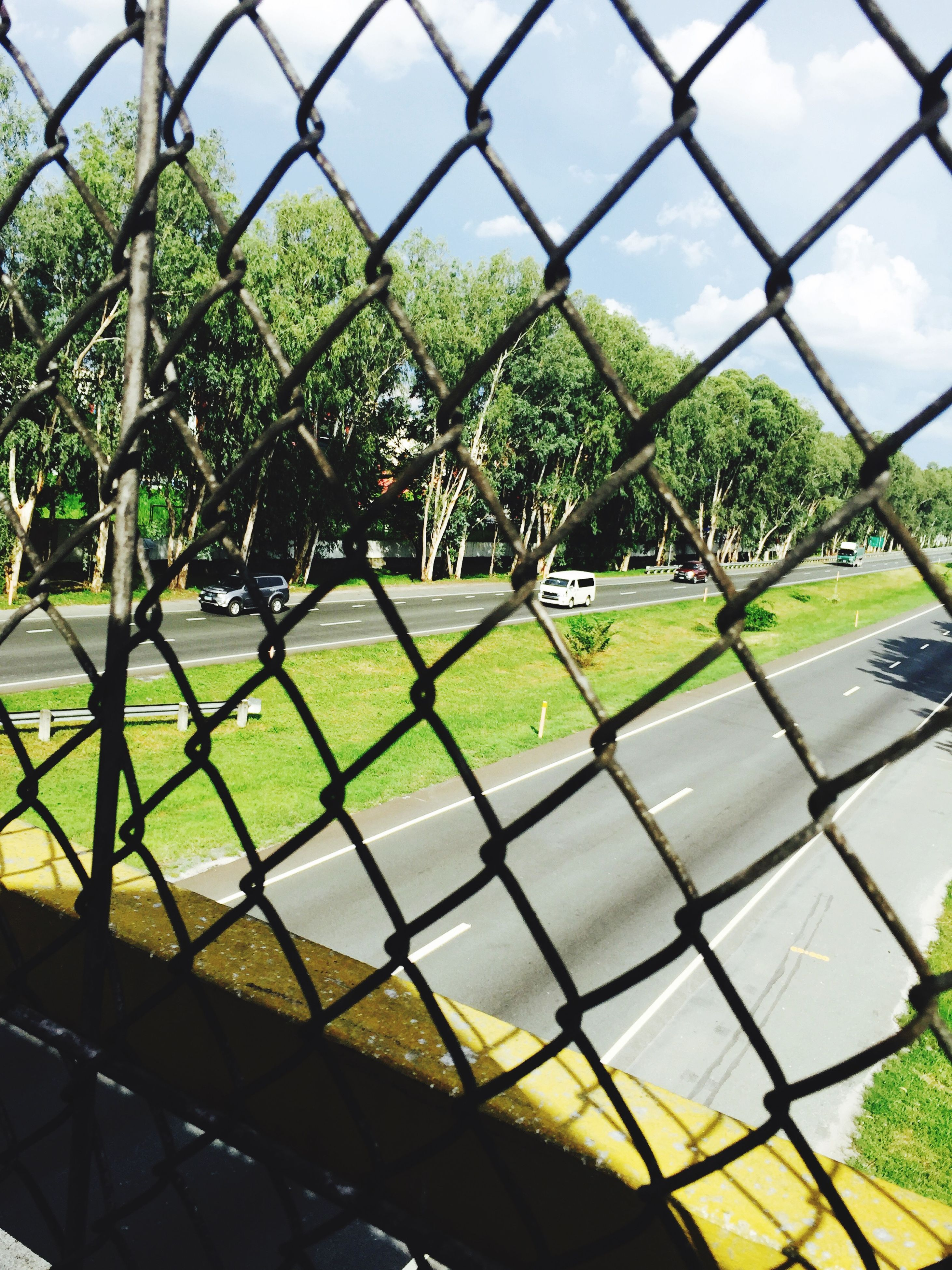 fence, chainlink fence, protection, green color, safety, metal, grass, security, tree, focus on foreground, field, growth, day, nature, park - man made space, sport, outdoors, sky, close-up, no people
