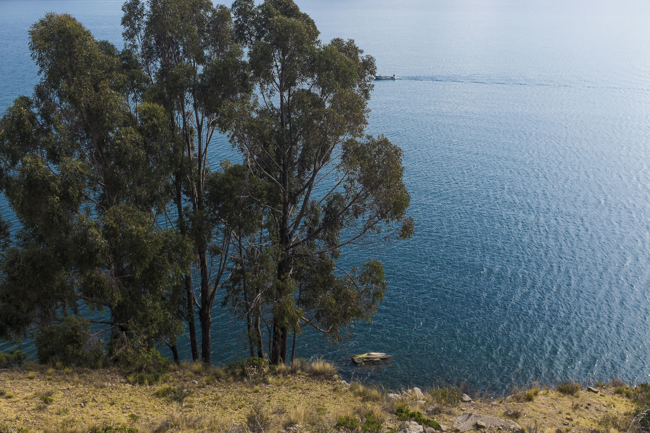 Beauty In Nature Calm Capachica Distant Lake Lake View Lakeside Outdoors Puno Remote Rippled Titicaca Tranquil Scene Tranquility Tree Water