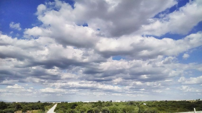 Show life you have a lot of reasons to be happy Landscape View Sky Clouds