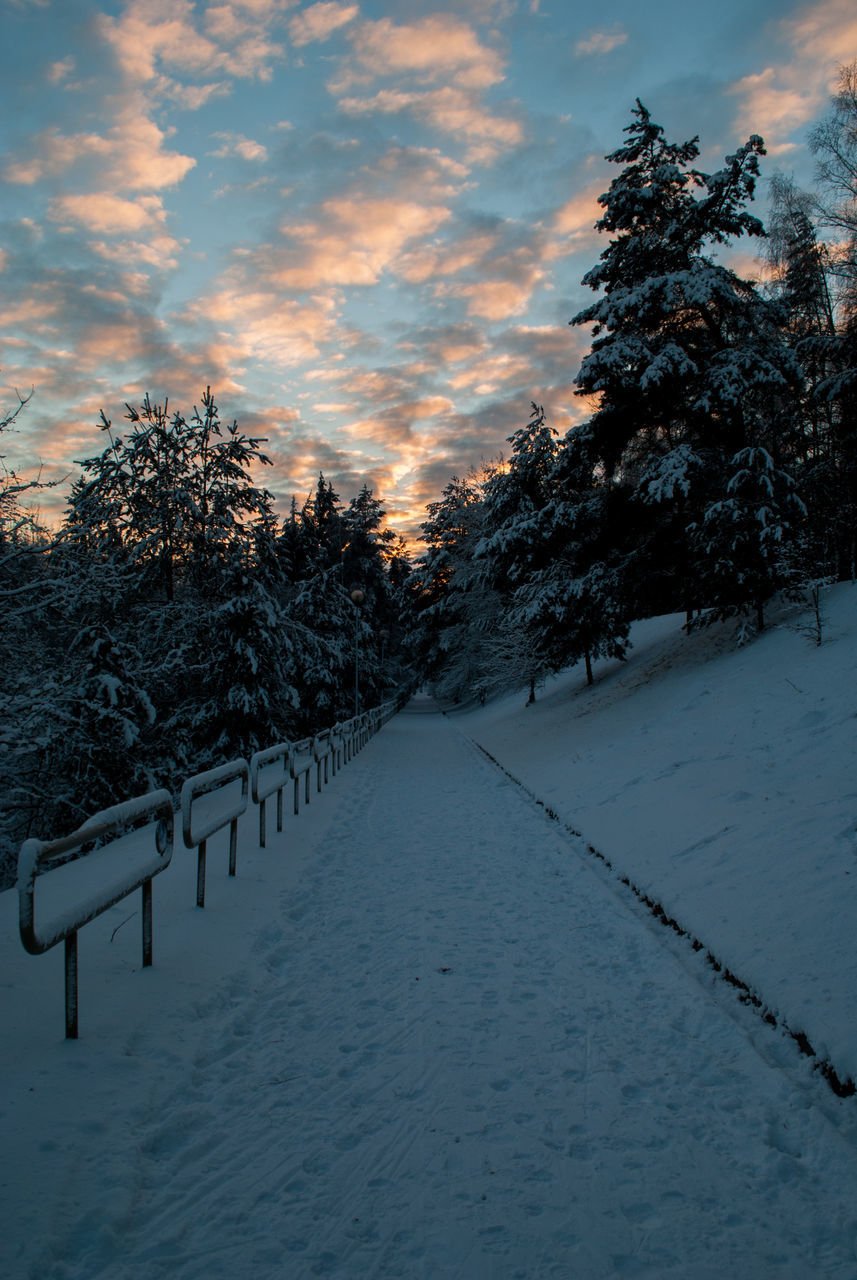 snow, winter, cold temperature, nature, tree, weather, beauty in nature, tranquil scene, tranquility, sky, scenics, no people, outdoors, sunset, the way forward, landscape, day