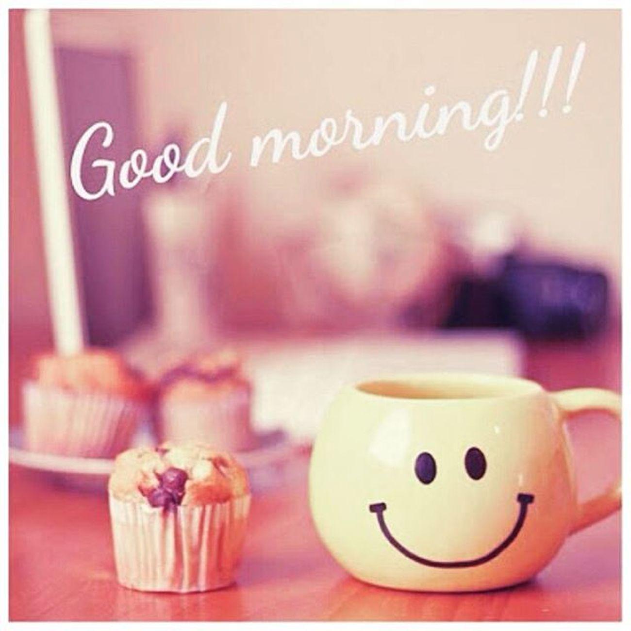 Esse cheiro de café de manhã, da vontade de ser café.....rs ☕🍩 Manhã Cafe Cheirodecafe