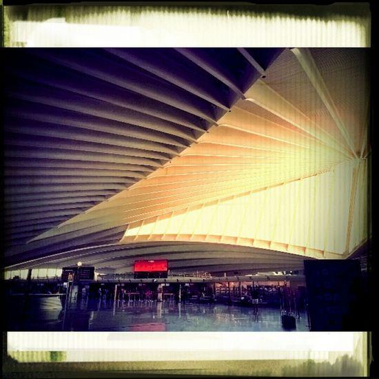 Bilbao Airport Travelling Taking Photos Hello World