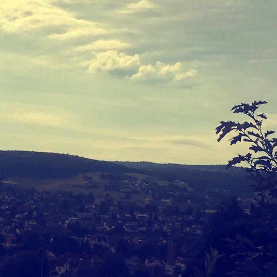 Erbach Deutschland No People Nature