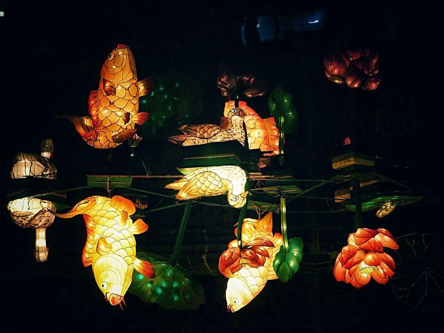 Water Reflections Flipphotography at Nakashima River Nagasaki Showcase: February Low Angle View On The Water Illimination Lantern Night Lights Lowlightphotography Night Photography Nagasaki Lantern Festival 2016 / todays All photos Panasonic Lumix GX1 LEICA D SUMMILUX 25mm 50mm Handheld Discover Your City Nagasaki-shi