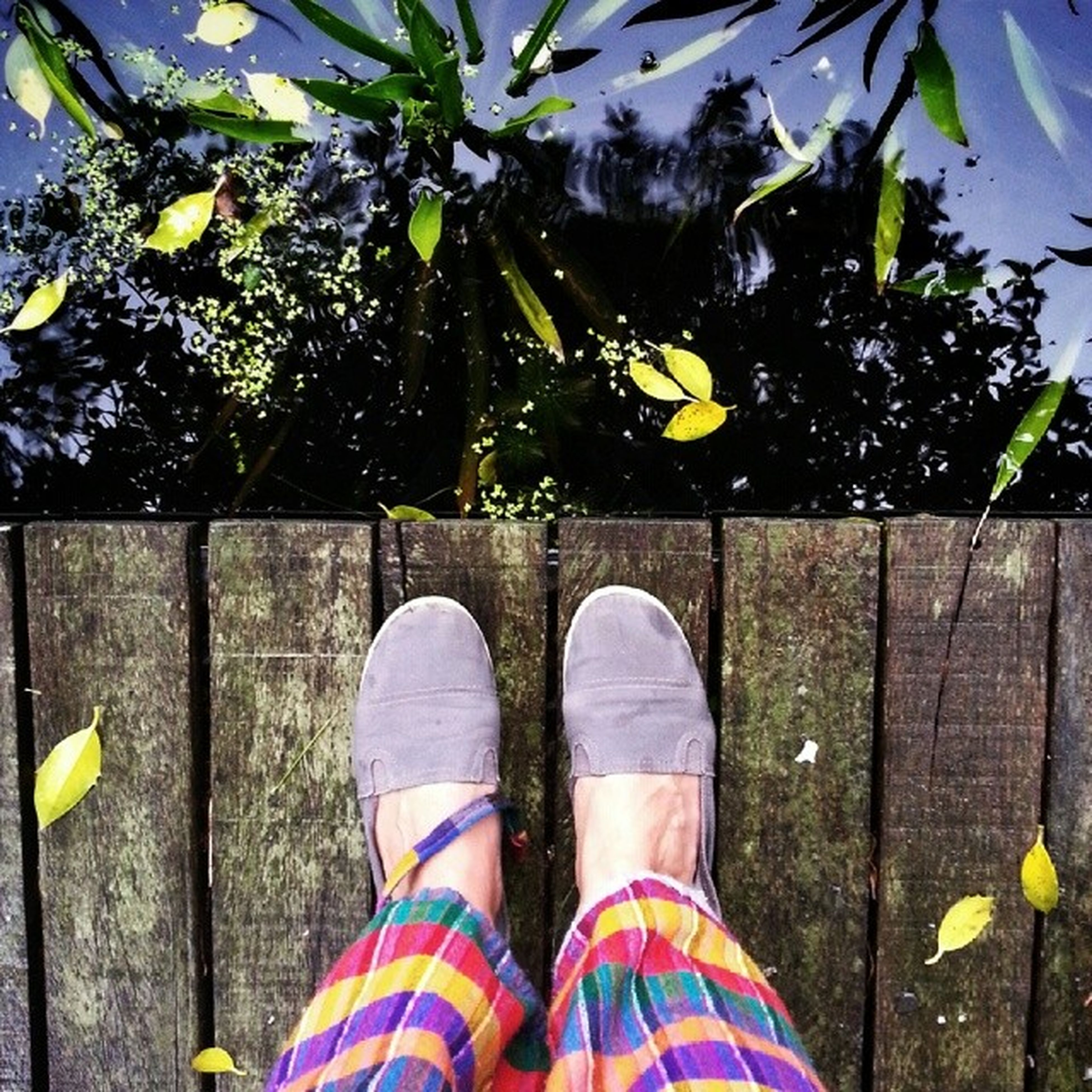 low section, person, shoe, personal perspective, standing, lifestyles, human foot, footwear, leisure activity, men, high angle view, yellow, jeans, leaf, outdoors, day