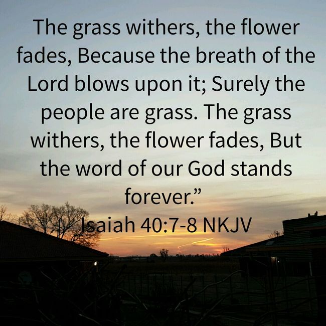 God's Word Stands Forever the Word Of God is Eternal, it Stands Forever, is Incomparable. Death Is Inevitable Be Prepared to face your Judge!