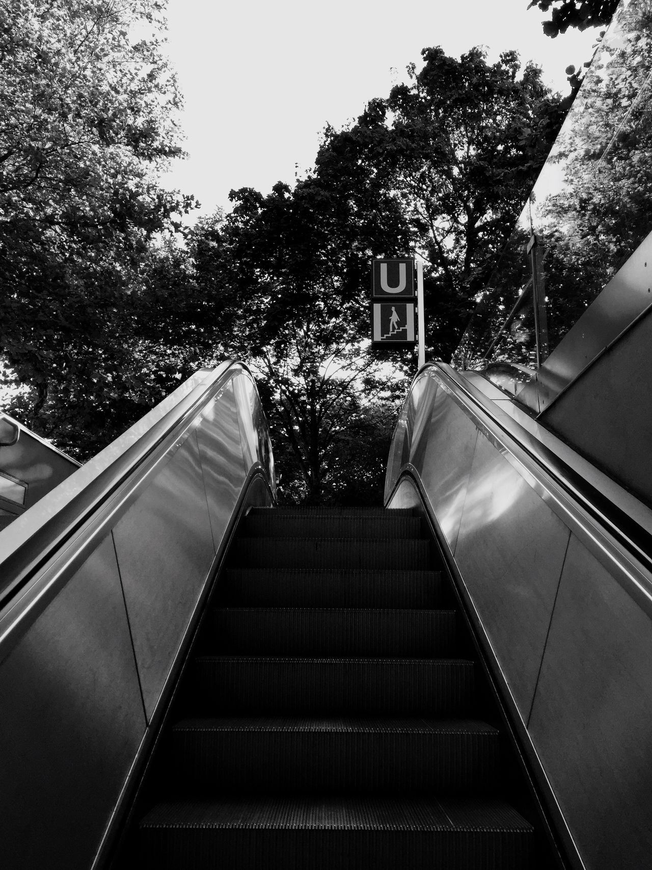 I❤️TheMoment Tree Steps The Way Forward Low Angle View Escalator No People Railing Justthemoment Detail enjoy the little things of life 😊 Capturing The Moment Learn & Shoot: Simplicity