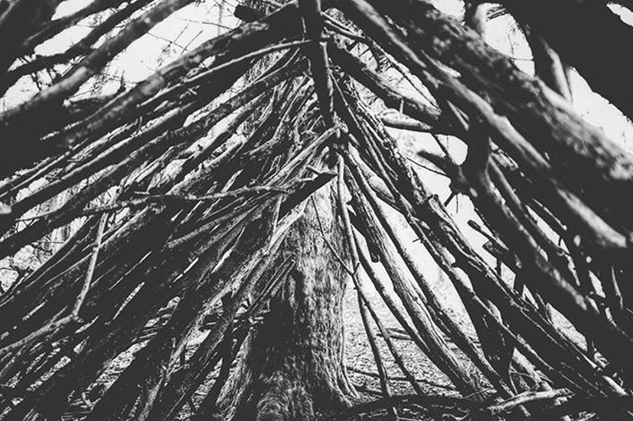 Leica Leicaq Cirencester