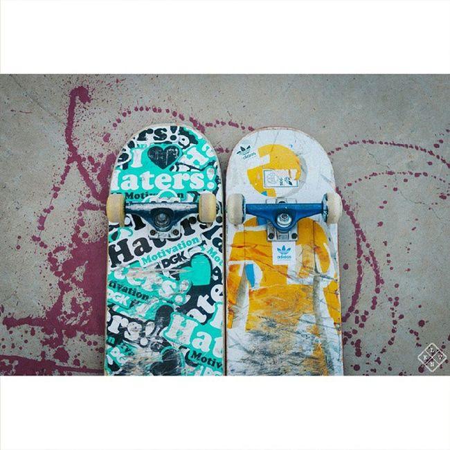 DGK VS GIRL Girlskate Skate Skateboarding DGK vscovscocamvscogridvscoedit vscolovers bestofvsco topvscovscofeaturevscogram instavscovsco_best vscofilm photoofthedayexplorationgramexploremore vscomuseum igmasters igerslaspalmasigerslpaminimalism mimalistminimal photo photography blur
