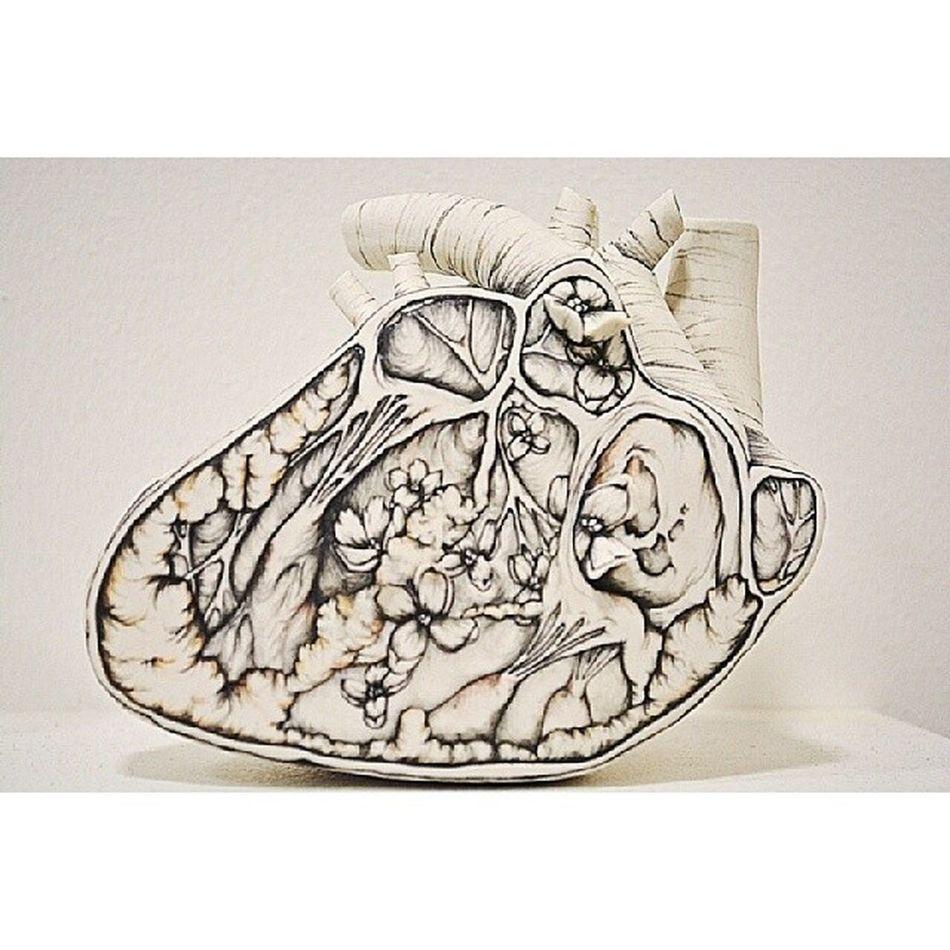 NikonD5200 Art Nceca2014 Nceca ceramics sculpture heart nature