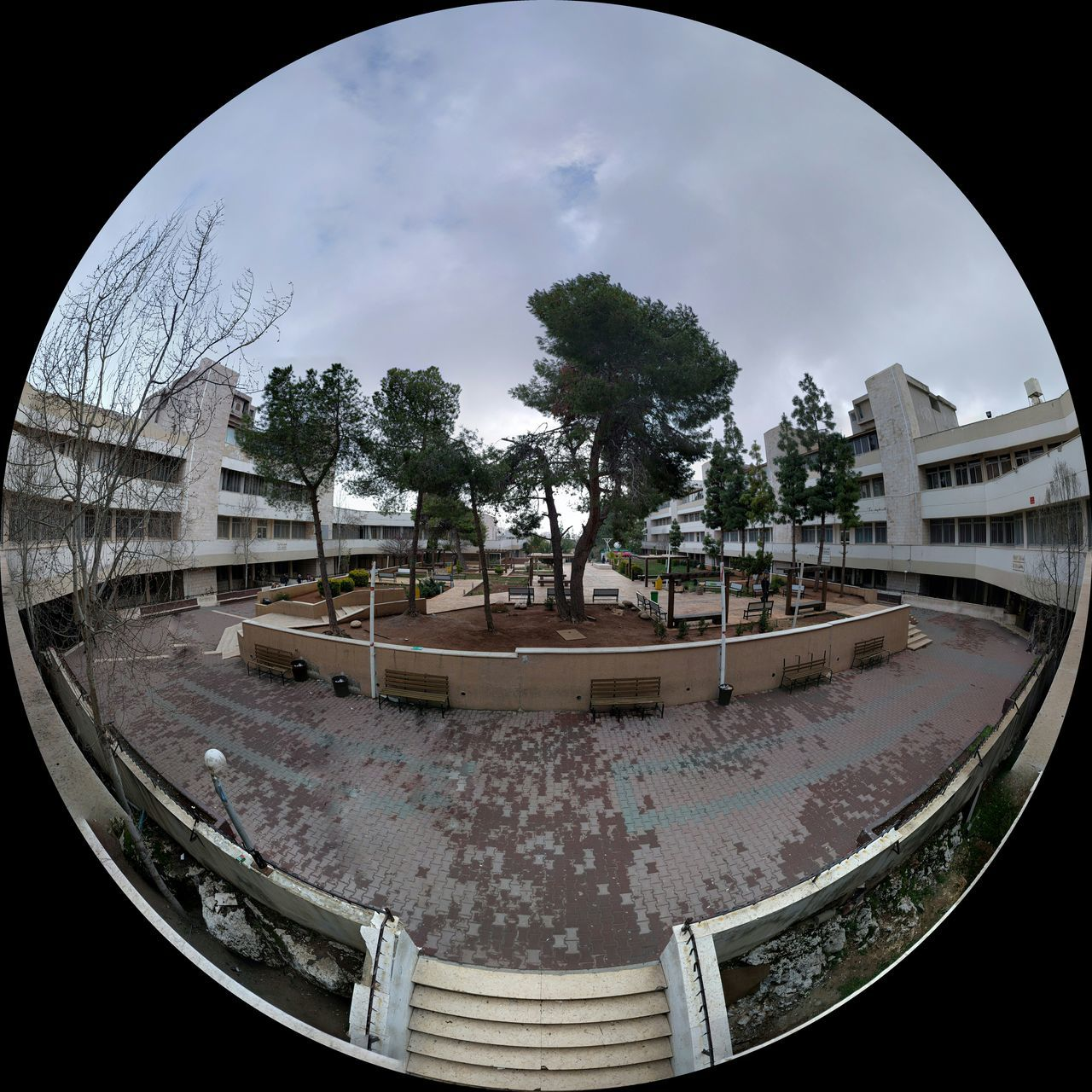 tree, fish-eye lens, architecture, built structure, indoors, day, sky, no people