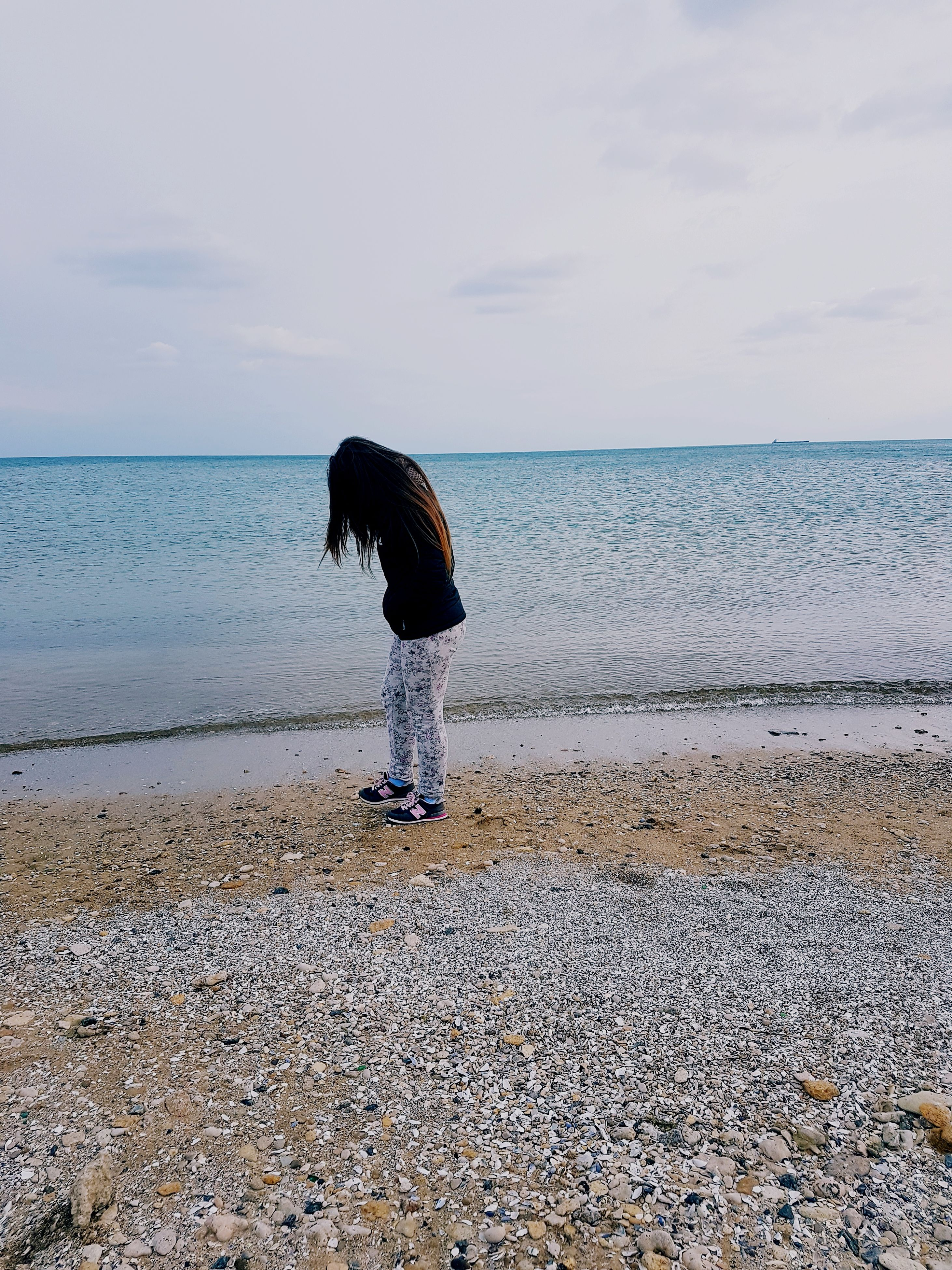 sky, sea, water, beach, nature, horizon over water, outdoors, scenics, beauty in nature, clear sky, no people, animal themes, day, mammal