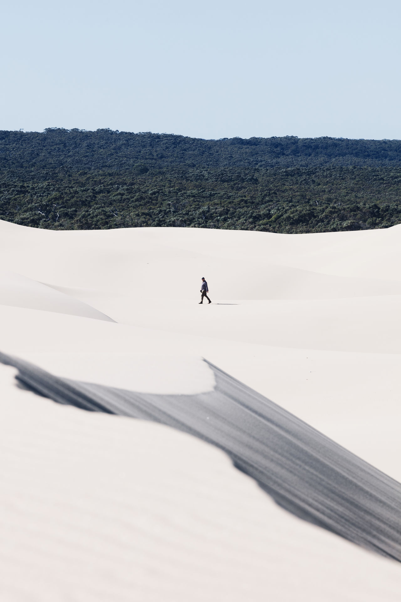A lone person walks along the Stockton Sand Dunes Adventures Australia Australia lifestyle Australia travel EyeEmNewHere Leading Lines The Week on EyeEm adventure arid climate beauty in Nature day Desert landscape layers one man only one person outdoors real people sand dune walking walking alone...