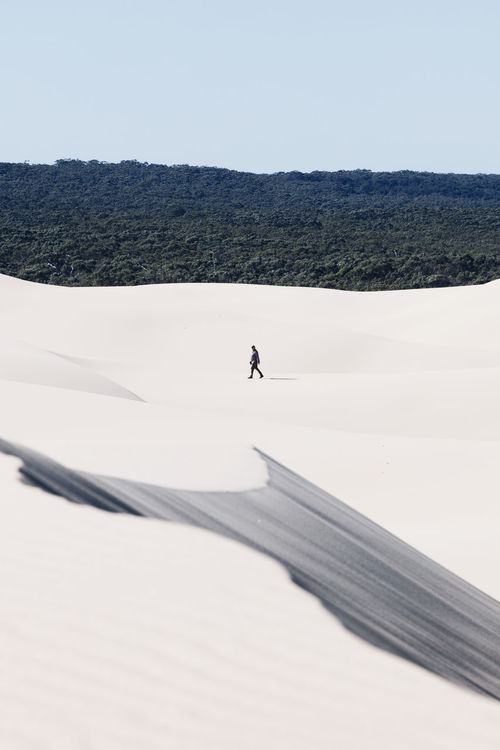 A lone person walks along the Stockton Sand Dunes Adventures Australia Australia Lifestyle Australia Travel EyeEmNewHere Leading Lines The Week On EyeEm Adventure Arid Climate Beauty In Nature Day Desert Landscape Layers One Man Only One Person Outdoors Real People Sand Dune Walking Walking Alone... Lost In The Landscape Perspectives On Nature Be. Ready.
