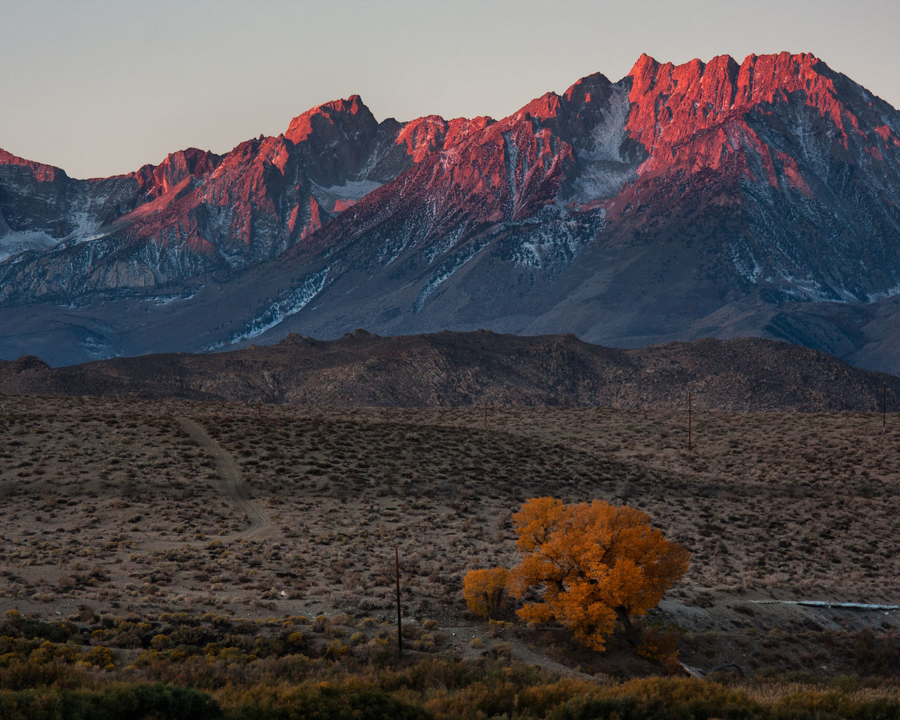 Sunrise on mountains near Bishop California Alpineglow Autumn Beauty In Nature California Majestic Mountain Mountain Peak Mountain Range Mountains Nature Non-urban Scene Outdoors Owl Physical Geography Remote Rugged Scenics Seirra Sunrise Tranquil Scene