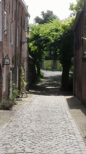 More Cobblestone Outdoors Architecture The Way Forward No People Building Exterior Tree