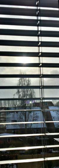 Groningen Beijum Winter Sun and then there was the....shining Myfuckinggroningen