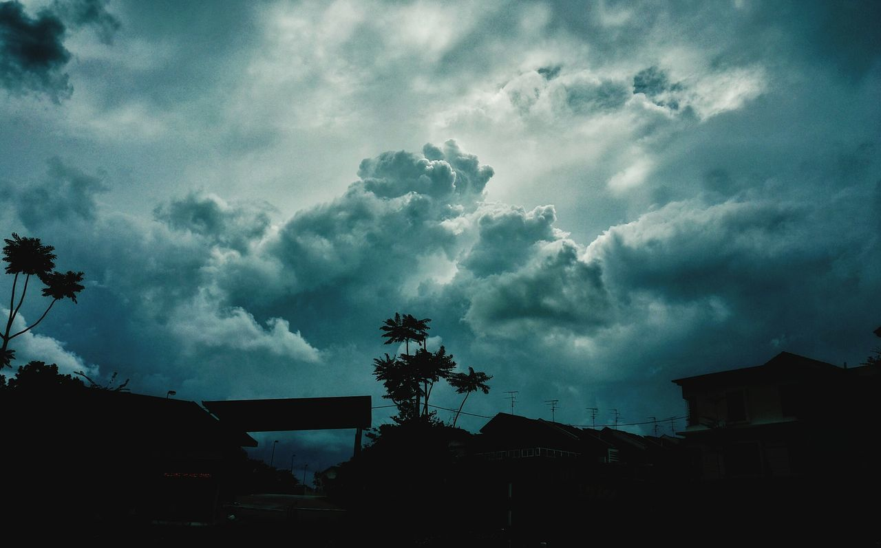 Sky Cloud - Sky Tree Dramatic Sky Storm Cloud Low Angle View Nature Silhouette Outdoors Scenics Phone Photography