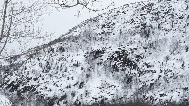Snow Mountain Mountain View Snowymountain Snow Covered Snowy Mountains Acadianationalpark Maine Winterphotography Maine Winter Snowy