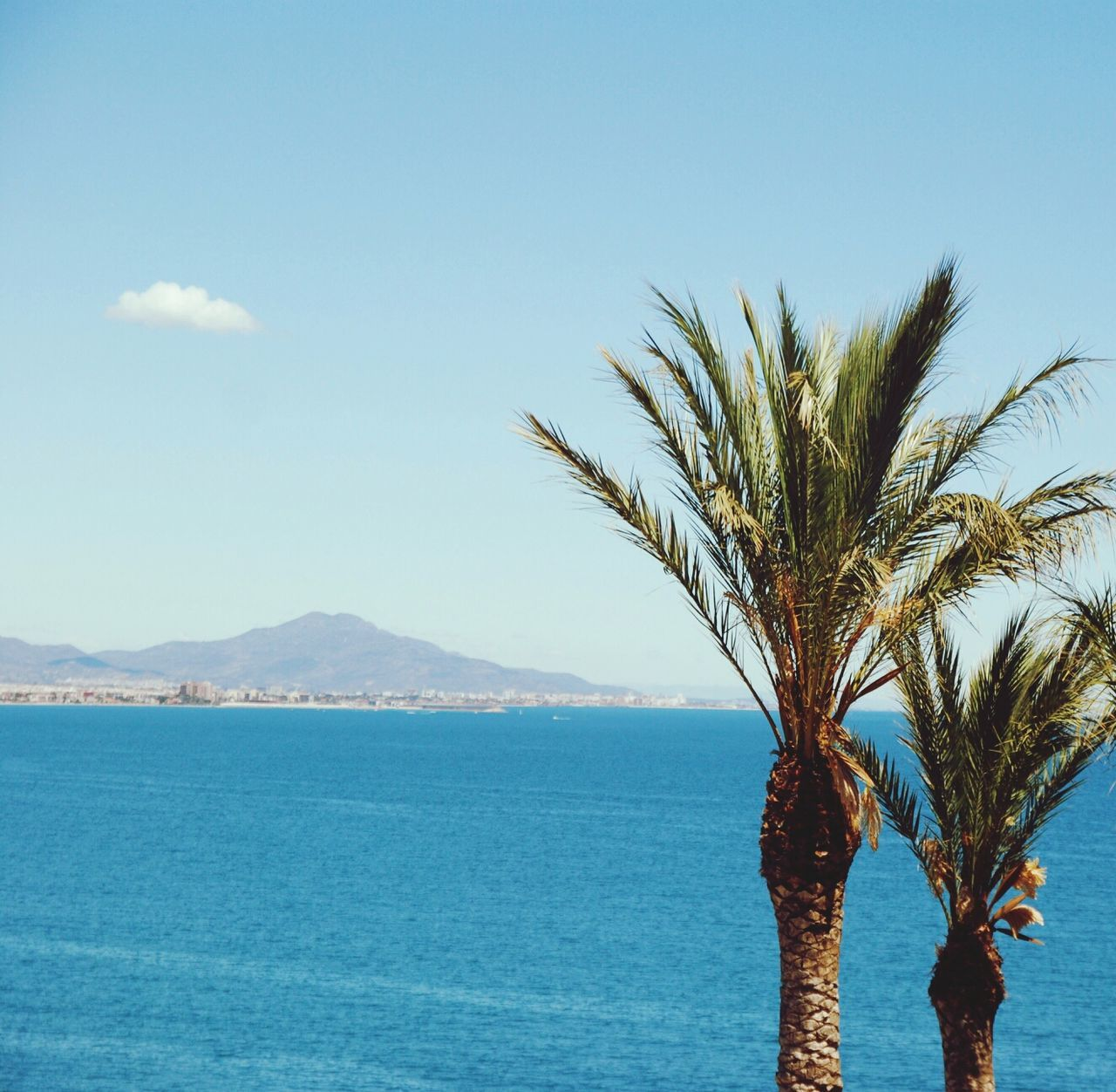 Beautiful stock photos of tropical, Beach, Holiday, Landscape, Mountains