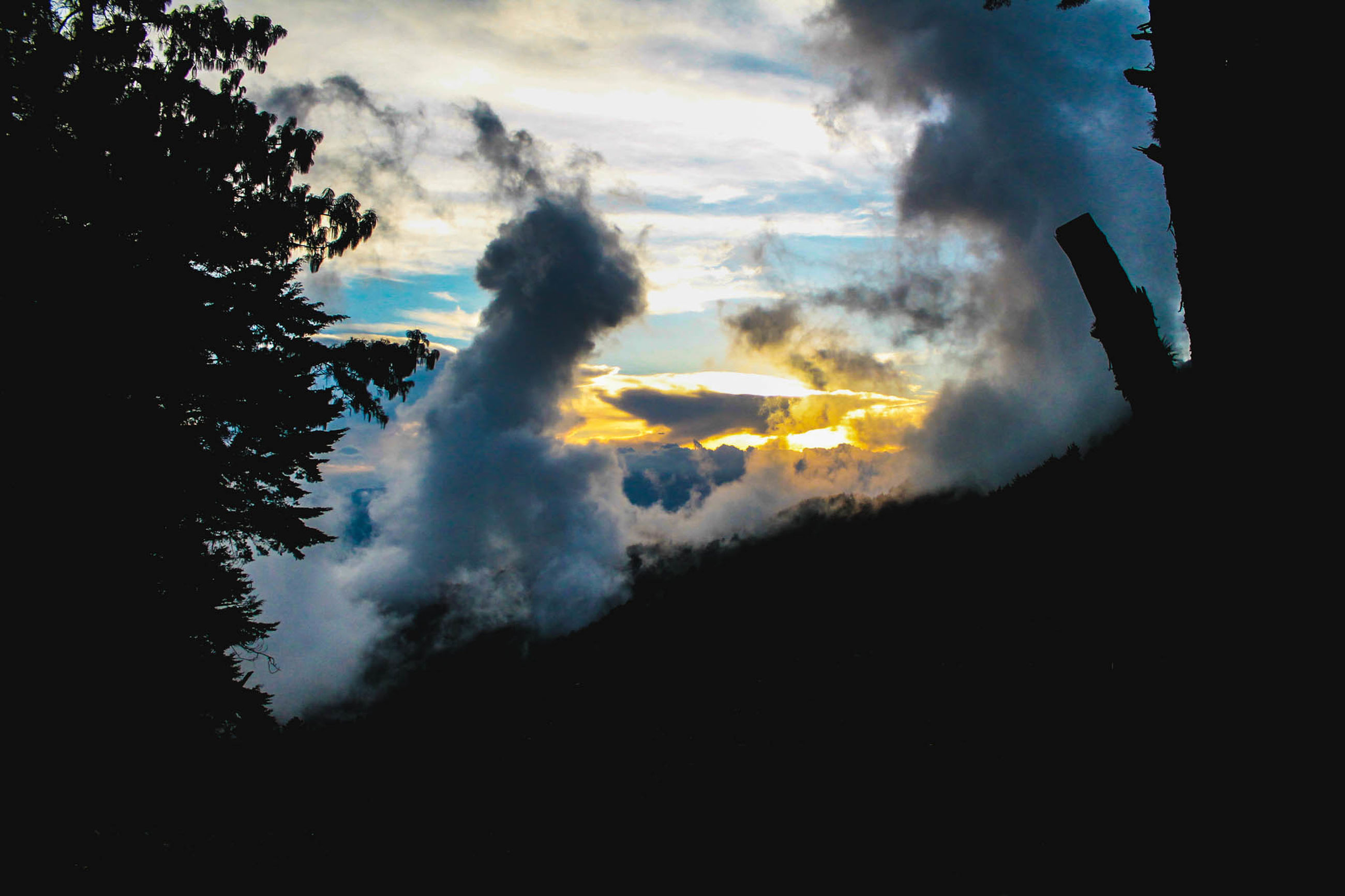 cloud - sky, sky, sunset, nature, no people, smoke - physical structure, beauty in nature, tree, outdoors, day