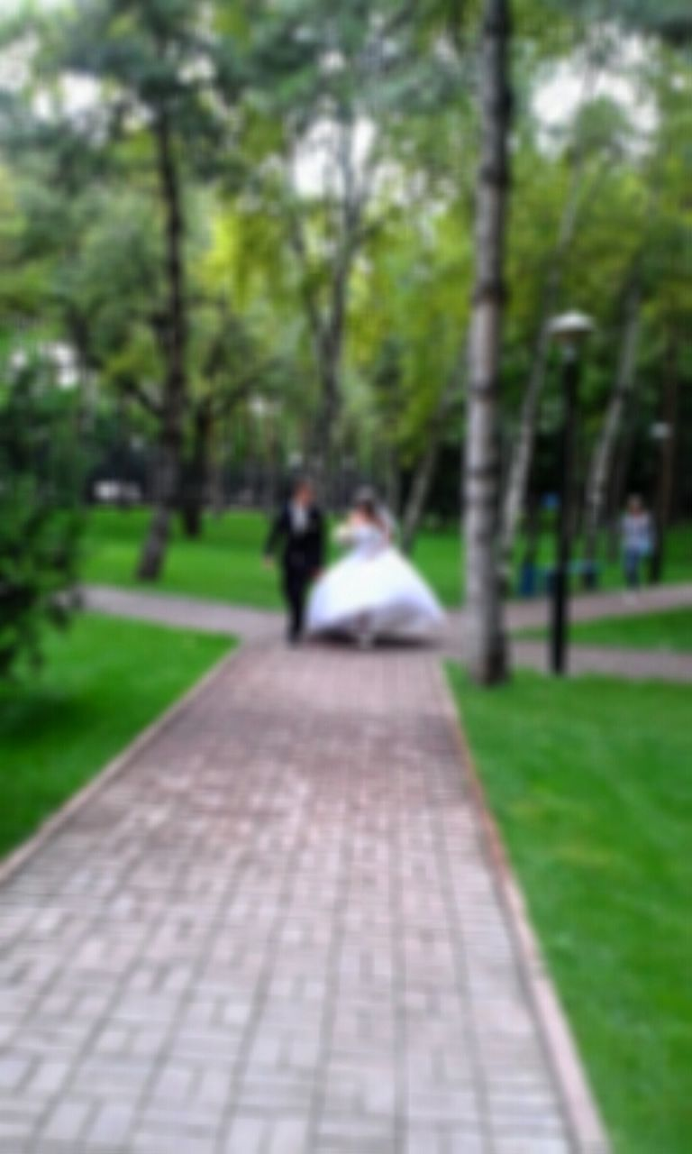 two people, real people, rear view, walking, men, tree, togetherness, day, grass, women, the way forward, leisure activity, focus on foreground, outdoors, park - man made space, sitting, nature, full length, bride, groom, people