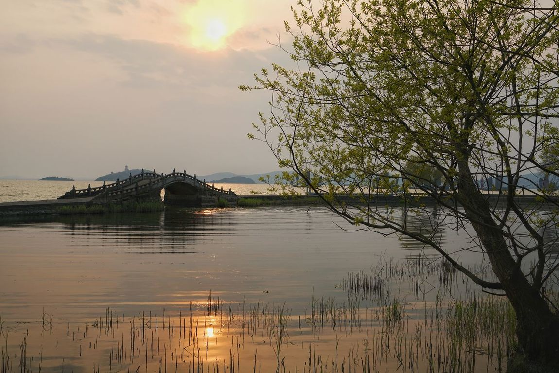 China Photos Sunset Lake View Bridge Water Reflections Nature Sunpark Landscape_Collection Landscape Lakeside Treepark Cloudpark Clouds And Sky Light And Shadow Hugging A Tree Streamzoofamily 43 Golden Moments