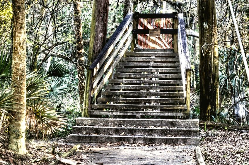 Stairs to a closed wooden suspension bridge... Bridge Suspension Bridge Hiking Walking Around Enjoying Life Taking Photos Escaping