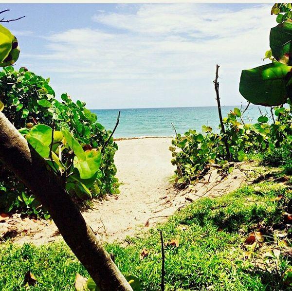 Jupiterflorida Beachphotography