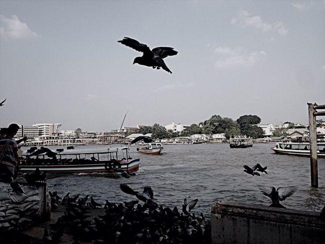 Keep Flying Thailand_allshots_BW Streetphotography